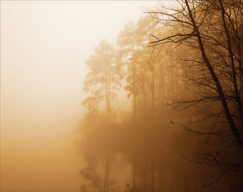 Fog on Shelly Lake I Art Print