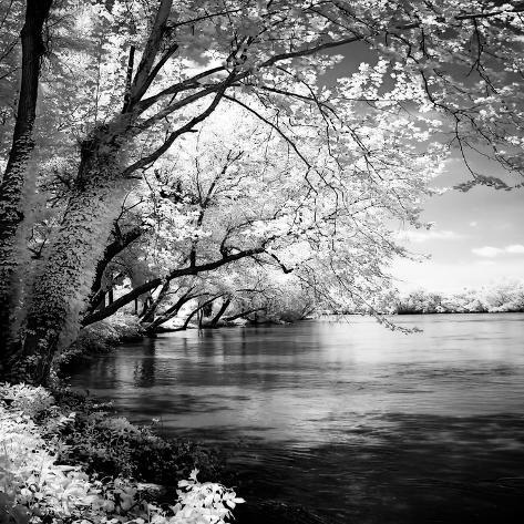 Spring on the River Square I Art Print