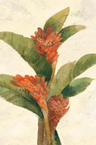 Ginger Blossom on White Art Print