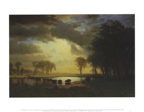 Buffalo Trail c.1867 Art Print