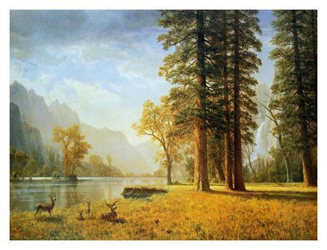 Hetch Hetchy Valley, California Art Print