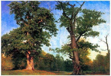 Albert Bierstadt The Pioneers of Forests Art Print Poster Poster