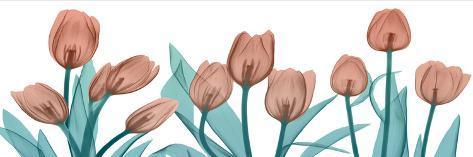 Burning Tulips Taidevedos
