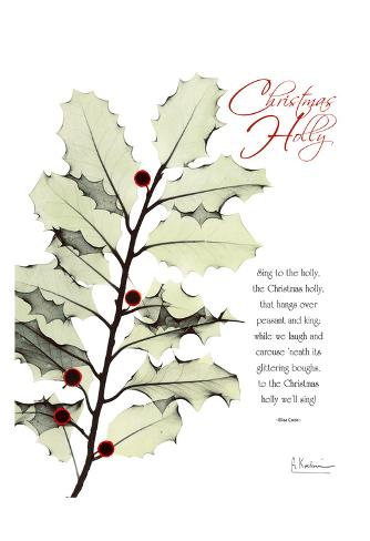Christmas Holly Art Print