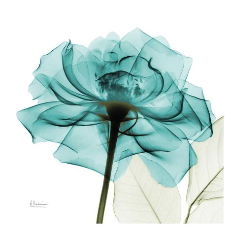 Teal Rose Art Print