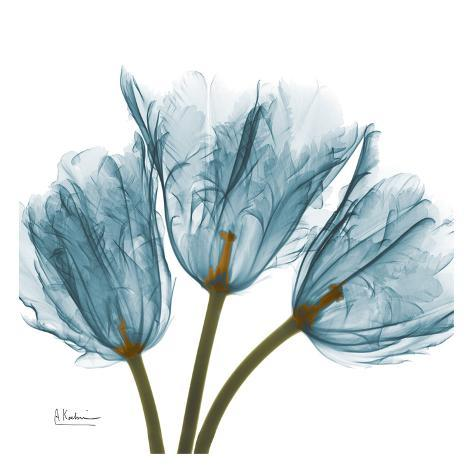 Tulips In Blue Posters By Albert Koetsier Allposters Ca