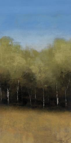 Beyond The Trees I Art Print