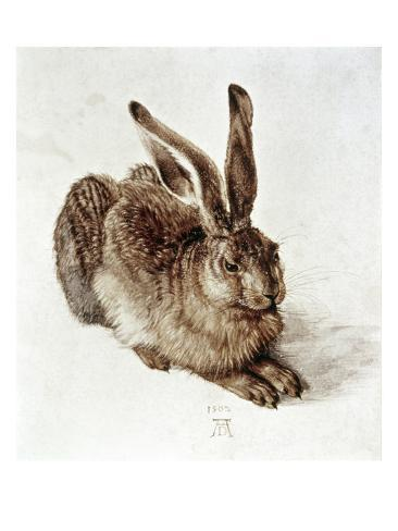 The Young Hare Giclee Print