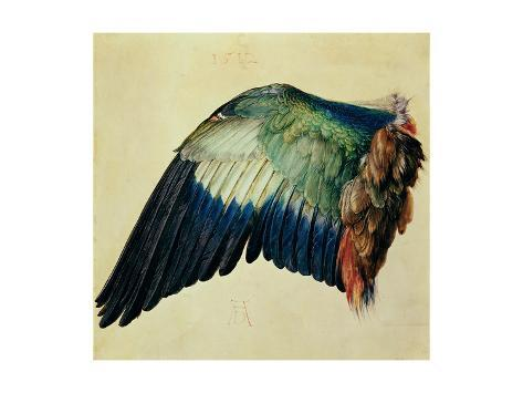 Wing of a Blue Roller, 1512 Giclee Print