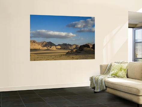 Desert wall mural by aldo pavan for Desert wall mural