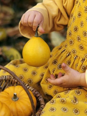 Girl Holding a Baby Pumpkin Photographic Print