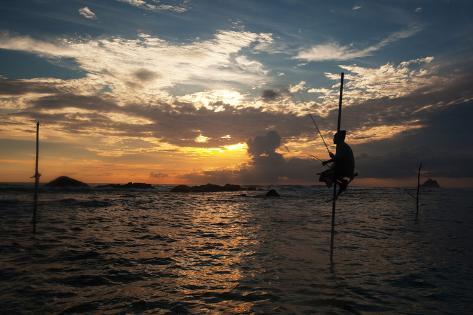 A Stilt Fisherman at Sunset Photographic Print