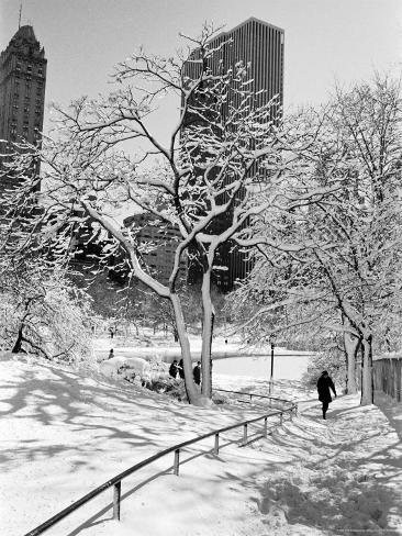 Central Park After a Snowstorm Photographic Print