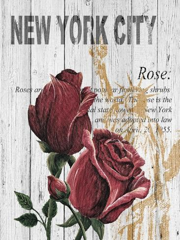 New York Roses Stampa artistica