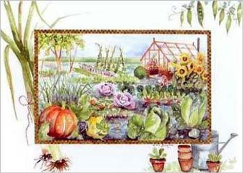 Vegetable Garden Art Print