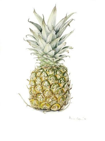 Ripe Pineapple, 2016 Giclee Print