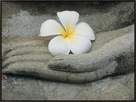 Buddha at Wat Yai Chai Khon Framed Canvas Print