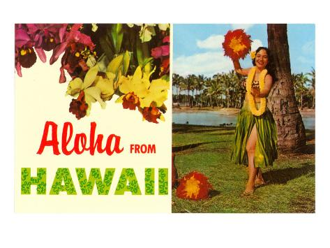 Aloha from Hawaii Art Print