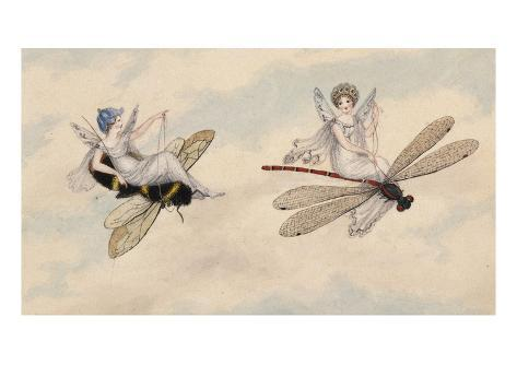 Two Fairies Flying Through the Air, One Seated on a Bee and the Other on a Dragonfly Giclee Print