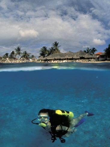 Woman Scuba Diving, Bonaire, Caribbean Photographic Print