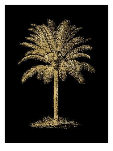 Palm Tree Golden Black Art Print