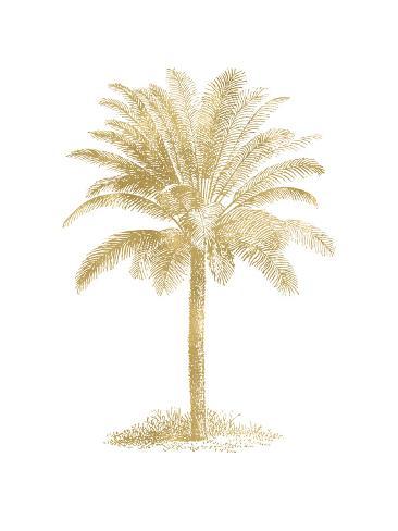 Palm Tree Golden White Art Print