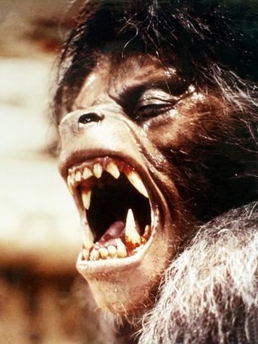 An American Werewolf in London Fotografia