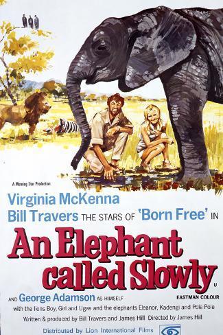 An Elephant Called Slowly Art Print