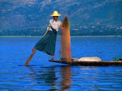 Intha Fisherman Tending to Nets and Rowing, Inle Lake, Shan State, Myanmar (Burma) Photographic Print