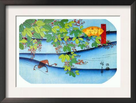 Clover Bush and Frog Impressão artística emoldurada