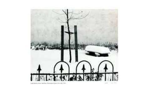 Fence with Snow Collectable Print