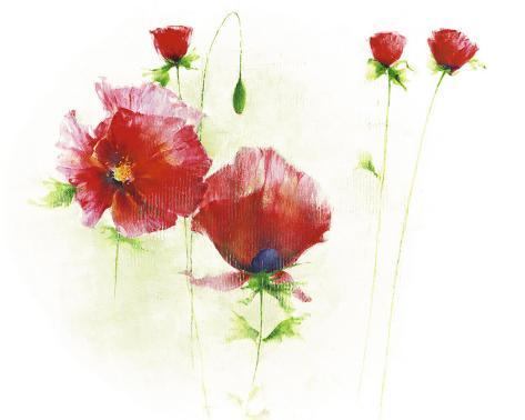 Red Poppies I Art Print