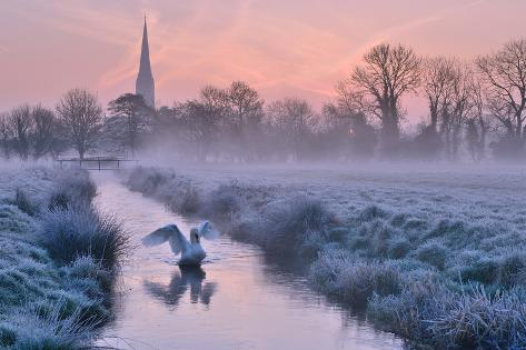 Salisbury Water Meadows Photographic Print