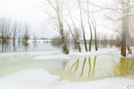 Winter River Photographic Print