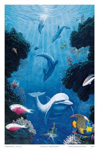 Dolphin Smiles Art Print