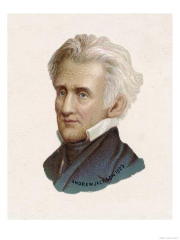 andrew jackson the 7th president of the united states of america essay