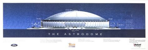 The Astrodome Art Print