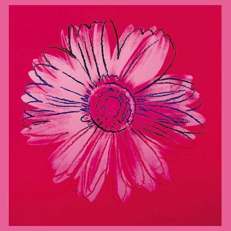 Daisy, c.1982 (Crimson and Pink) Art Print