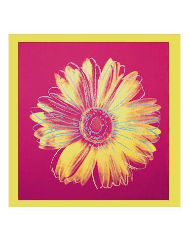 Daisy, c.1982 (Fuschia and Yellow) Art Print