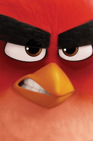 Angry Birds- Red Close-Up Poster