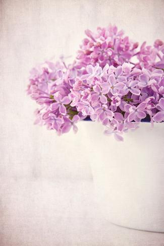 Bouquet Of Purple Lilac Flowers On Vintage Background Photographic