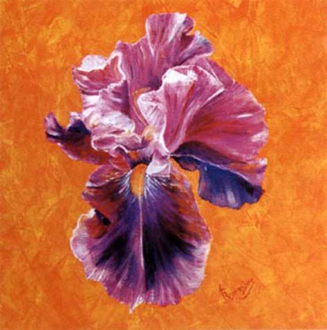 Un Amour d'Iris Art Print