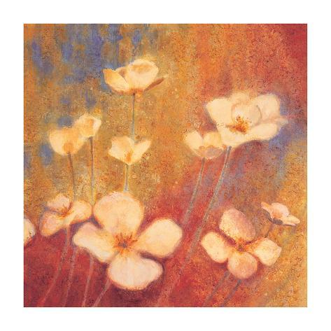 Field of Color II Giclee Print