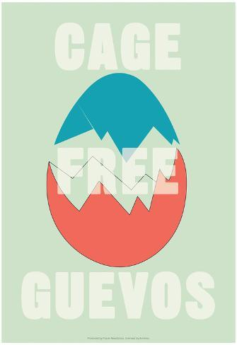 Annimo Cage Free Guevos Poster