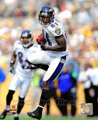 Anquan Boldin 2010 Action Photo