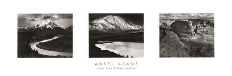 Our National Parks Impressão artística