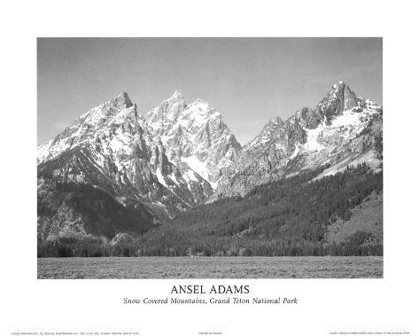 Parque Nacional Grand Teton Minipôster