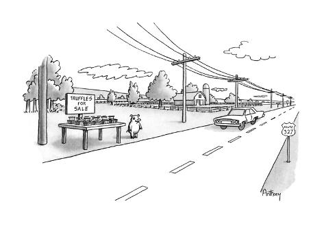 Pig selling truffels on roadside. - New Yorker Cartoon Premium-giclée-vedos