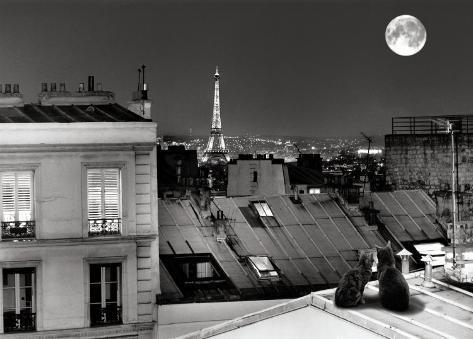 La Tour Eiffel de la rue St Eleuthere Art Print