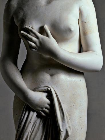 Venus Italica Art Print